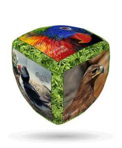 Unique-Birds-V-CUBE-2-Pillow-1