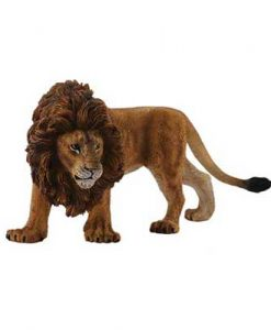 african-lion-88414