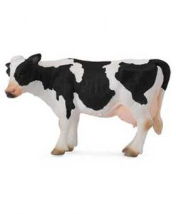 friesian-cow-884814