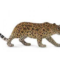 88708-amur-leopard