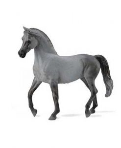 arabian-mare-grey-89885