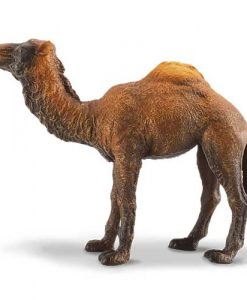 fairyland-collecta-dromada-kamila