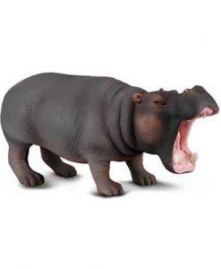 hippopotamus-88029