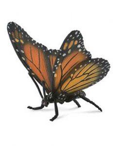 monarch-butterfly-88598