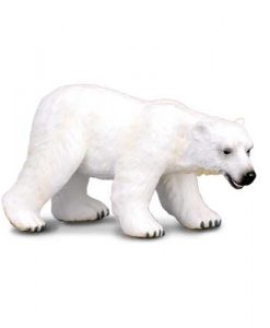polar-bear-88214