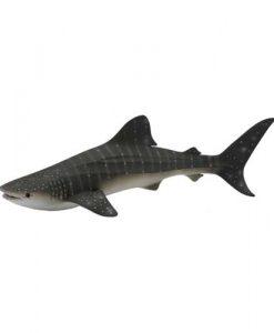 shark-wale-88453