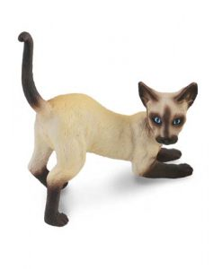 siamese-cat-88332