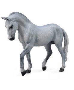 trakehner-stallion-grey-88733