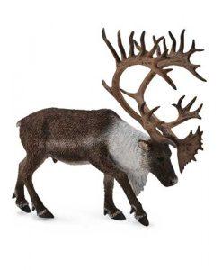 woodland-caribou-88709
